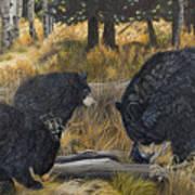Along An Autumn Path - Black Bear With Cubs Art Print