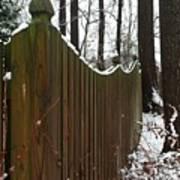 Along The Fence Art Print