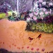 Along the Garden Path Art Print