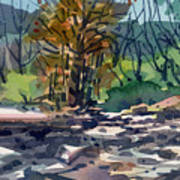 Along The Russian River Art Print