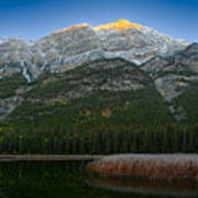Alpenglow Over Frosty Reeds Art Print