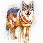 Alpha Wolf Art Print