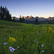 Alpine Dawn Art Print