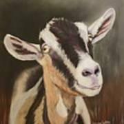 Alpine Goat Art Print
