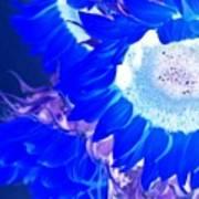 Alternate Reality Sunflower Art Print