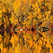 Amazing Autumn Art Print