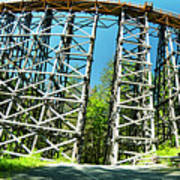 Amazing Kinsol Wooden Trestle Panorama View, Vancouver Island, Bc, Canada. Art Print