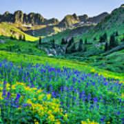 American Basin In Bloom Art Print