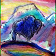 American Buffalo Sunset Art Print by M C Sturman