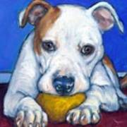 American Bulldog With Yellow Ball Print by Dottie Dracos