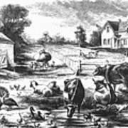 American Farmyard, C1870 Art Print by Granger