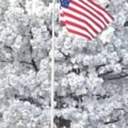 American Flag Snow  Art Print