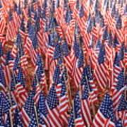 American Flags In Tampa Art Print