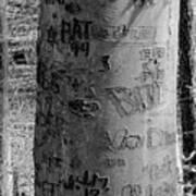 American Graffiti 5  Tattoos For Trees Art Print