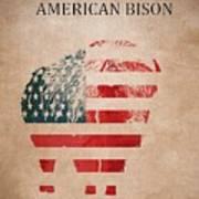 American Mammal The Bison Art Print