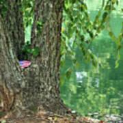 American Pride By The Pond Art Print
