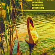 Americas Wetlands Art Print