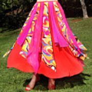 Ameynra Belly Dance Fashion - Multi-color Skirt 93 Art Print