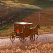 Amish Buggy Afternoon Sun Art Print