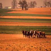 Amish Country Farm Landscape Art Print