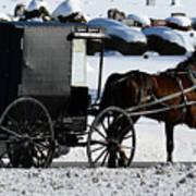 Amish Crossing Art Print
