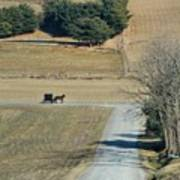 Amish Horse And Buggy On A Country Road Art Print