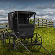 Amish Horse Buggy Art Print