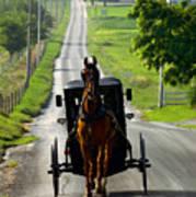 Amish Morning Commute Art Print