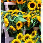 Amsterdam Sunflowers Art Print