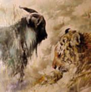 Amur And Timur Art Print