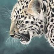 Amur Leopard Cub Art Print