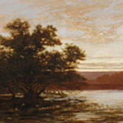 An Australian Mangrove. Ebb Tide Art Print