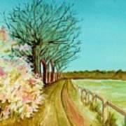 An English Footpath Art Print