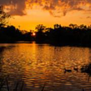An Orange Pond. Art Print