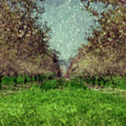 An Orchard In Blossom In The Eila Valley Art Print