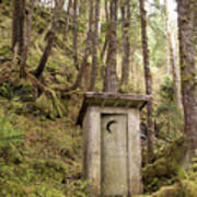 An Outhouse In A Moss Covered Forest Art Print by Michael Melford