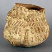 Anasazi Bowl Art Print