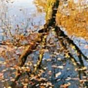 Anchorage In Autumn Art Print