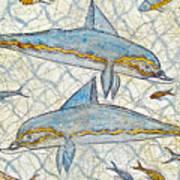 Ancient Greek Dolphins Art Print