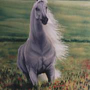 Andalusian Spirit Art Print