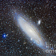 Andromeda Galaxy With Companions Art Print