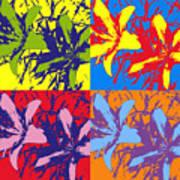 Andy's Lillies Art Print