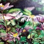 Anemones Japonaises Art Print