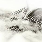 Angelic Message Art Print