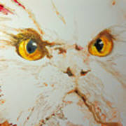 Angry Cat. Art Print