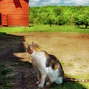 Animal - Cat - The Mouser Art Print