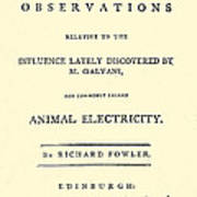 Animal Electricity, Title Page Art Print