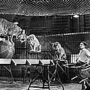 Animal Tamer, 1930s Art Print
