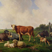 Animals Grazing In A Meadow  Art Print by Hendrikus van de Sende Baachyssun