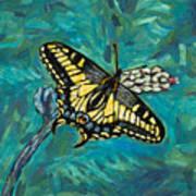 Anise Swallowtail Art Print